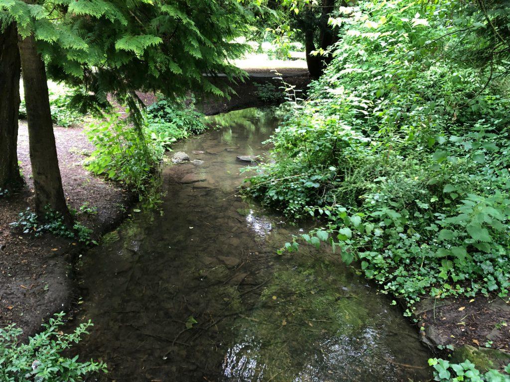 Stream on Ray Mill Island
