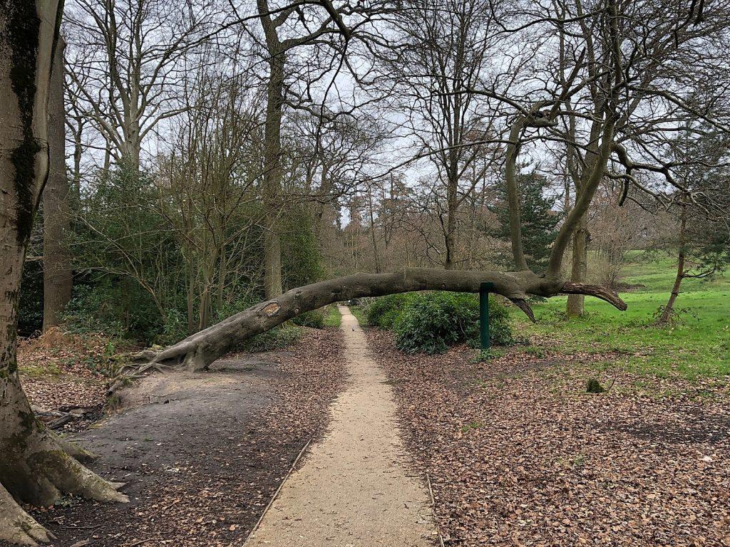 Lily Hill Park, Bracknell