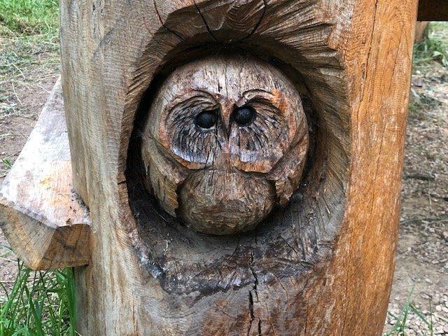 Owl wood carvings at Bramshot Farm Country