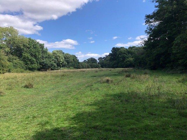 Field in Sandhurst