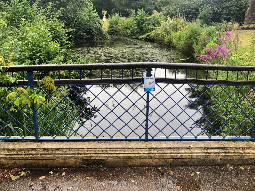 Pond Bridge at Herschel Park