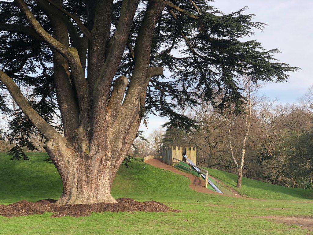 The Hedgehog Park Leppington