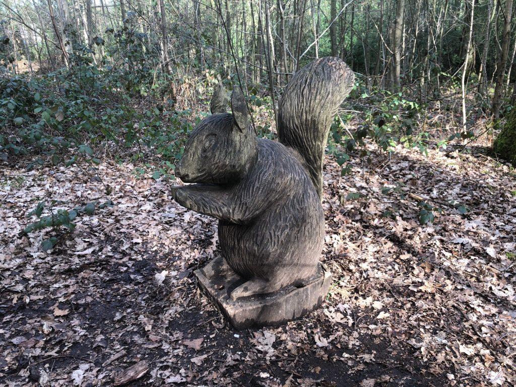 Woodland Trail Pinewood