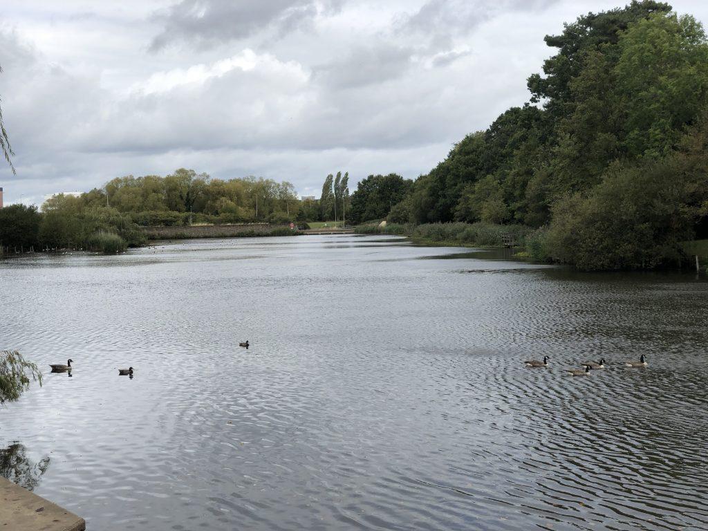 Mill Pond Bracknell