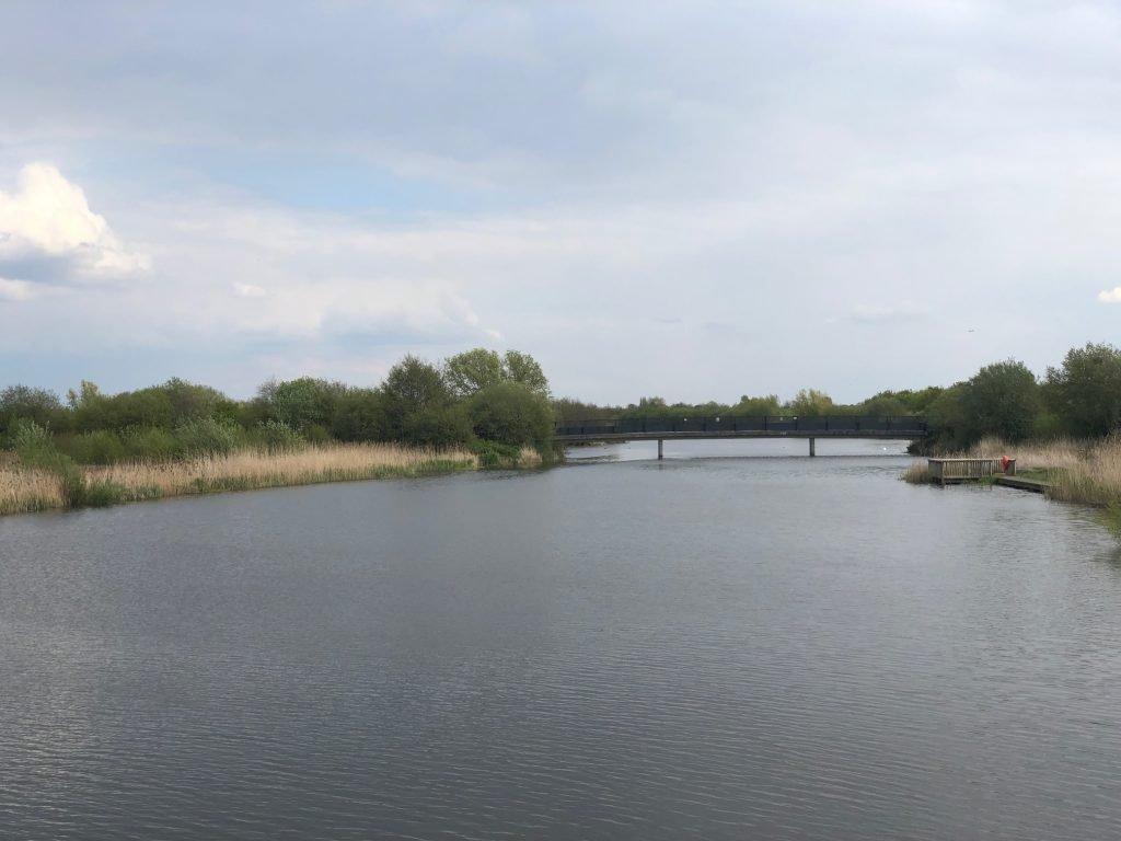 Bridge at Dorney Wetlands