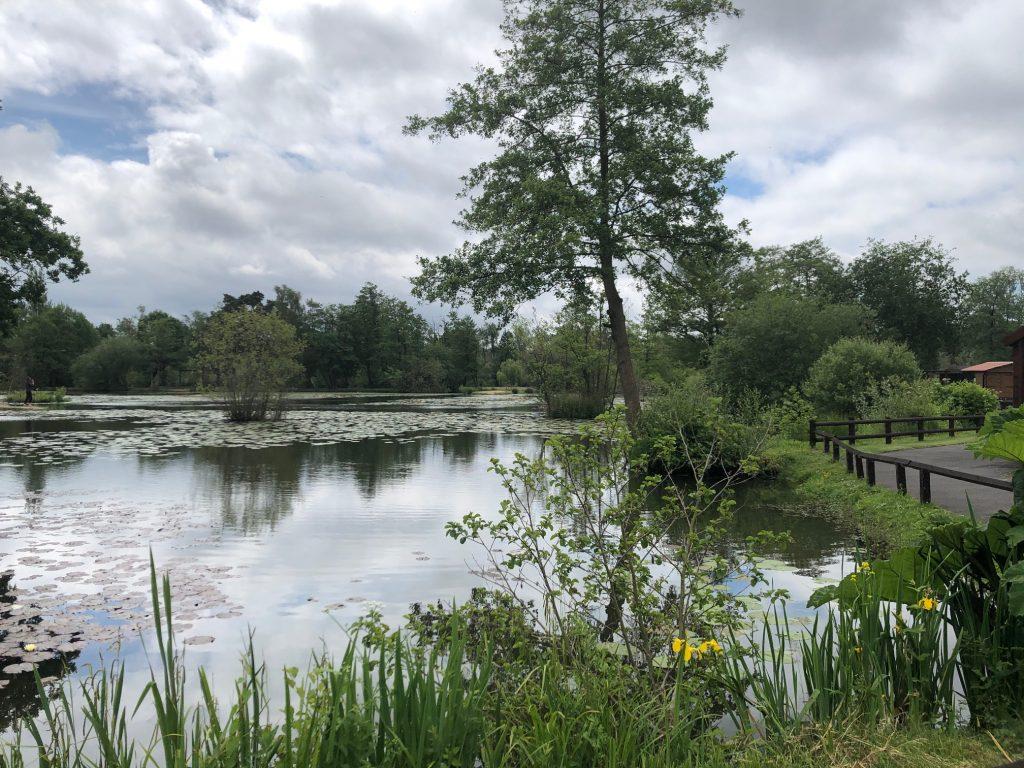 Lake at Jakes Play World
