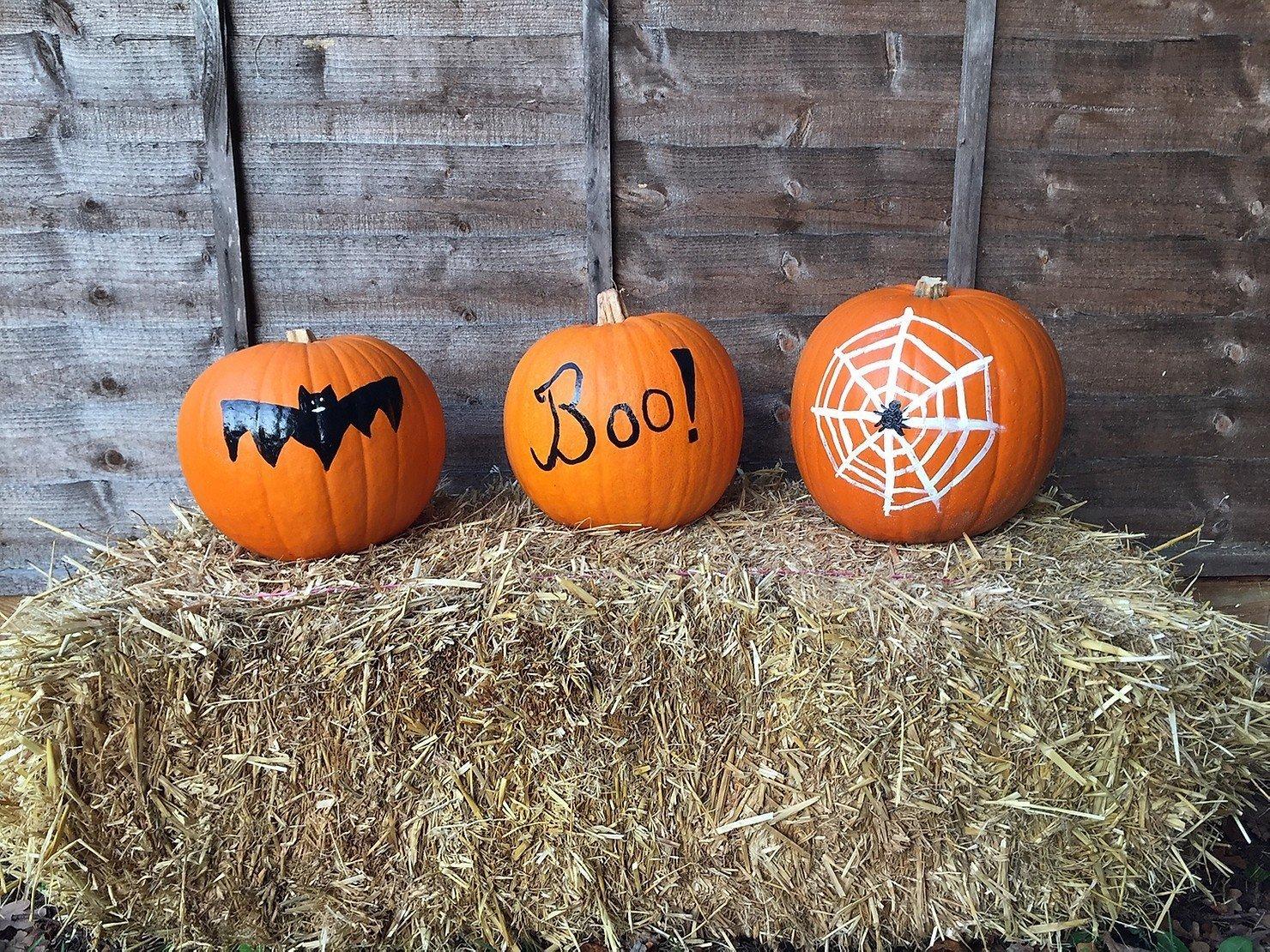 Pick Your Own Pumpkin & Pumpkin Carving Events