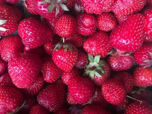 Grays Farm Fruit Picking in Wokingham
