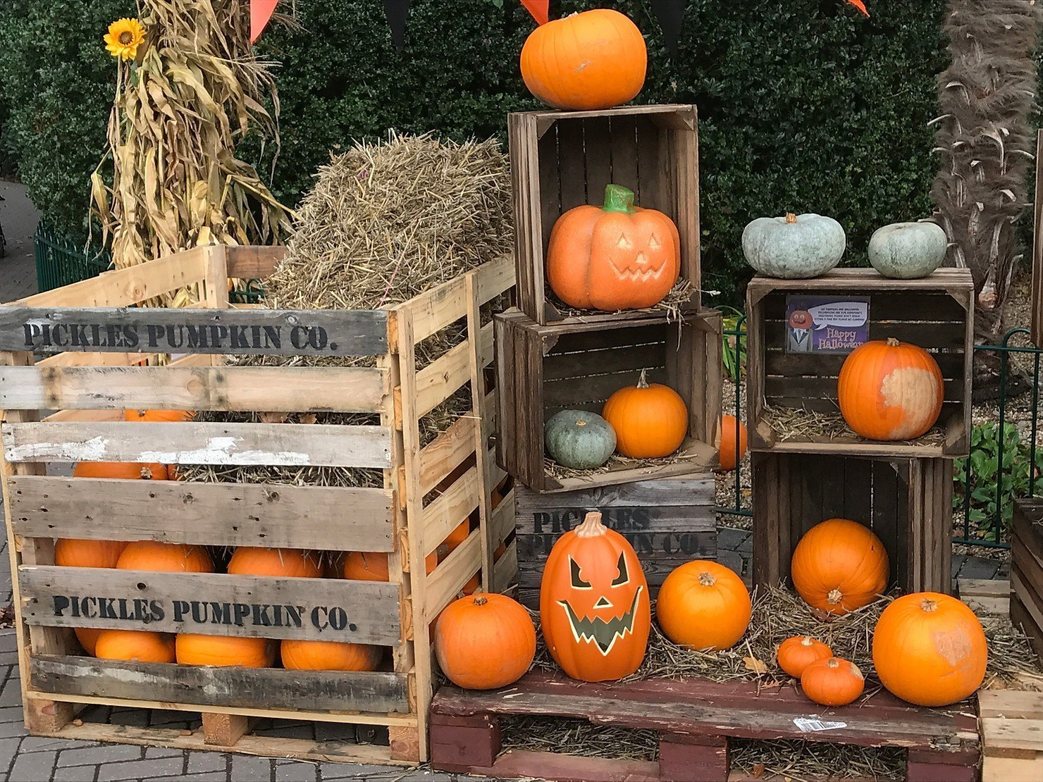 What's on Guide, Halloween 2018 in Berkshire