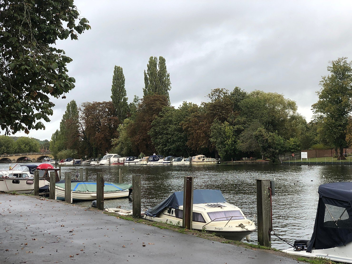 Visiting Mill Meadows, Henley on Thames