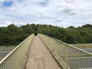 Walking at Maidenhead Thicket & The Butterfly Trail