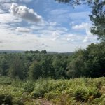 The view from Finchampstead Ridges