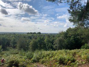 Walking at Finchampstead Ridges