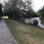 Walks in Bracknell Forest