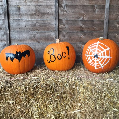 What's On Guide – October Half Term & Halloween 2020