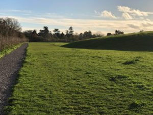 Walks in Windsor and Maidenhead