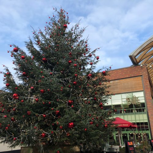 Christmas What's On Guide in Berkshire