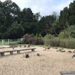 South Hill Park Toddler Park