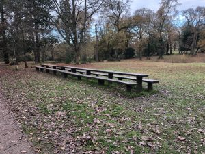 Longest picnic table in England made from a single piece of wood