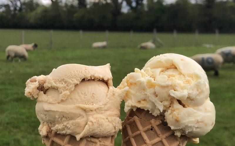 Visiting Hitcham Dairy Ice Cream
